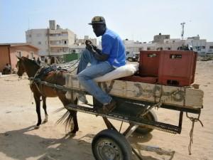 Boubacar sur son taxi-charrette. Par Mylène Colmar