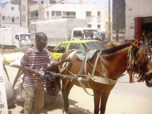 Un taxi-charrette- Par Josiane Kouagheu