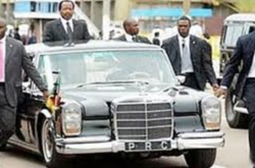 Article : Stop, arrêtez  tout, Paul Biya arrive !