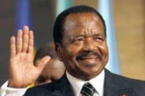 Article : M. le président, j'ai 32 ans et je veux rester au Cameroun !