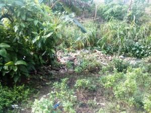 Des ordures jetées dans le drain bouchent cette principale voie de canalisation d'eau dans le quartier. Crédit-photo: @JosianeKouagheu